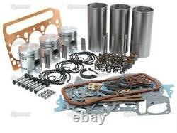 Reconstruire Kit Withvalves Pour Perkins 3.144 Diesel Engine Ford Fordson Dexta Tractor+